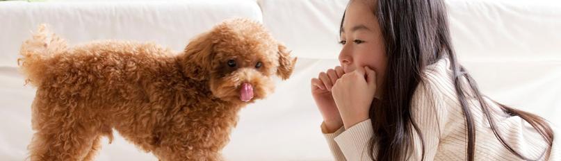少女と小型犬